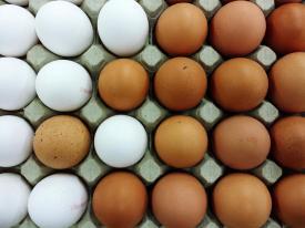commercial-eggs.jpeg
