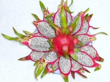 dragon-fruit-1441875748-639767