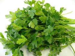 flat-parsley