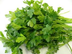 flat-parsley