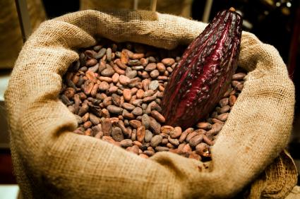 cocoa-beans-bag