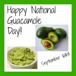 national-guacamole-day-3-300x300