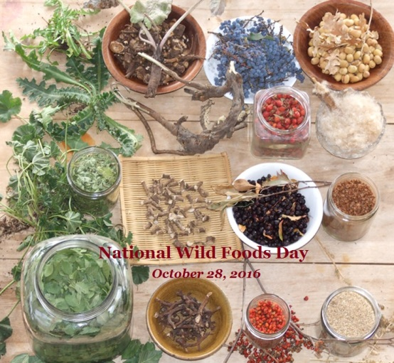 wildfoodhunt