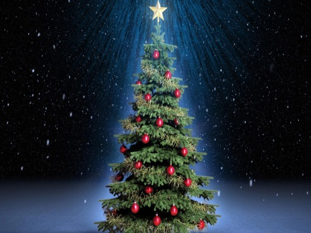 beautiful-christmas-trees-06