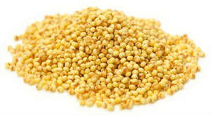 millet1-small