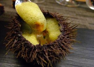sea-urchin-at-agape-substance-restaurant-in-paris