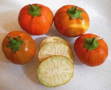 i-eggplant-turkishorange