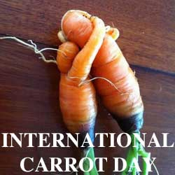 international-carrot-day